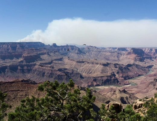 Scary US National Parks Stories